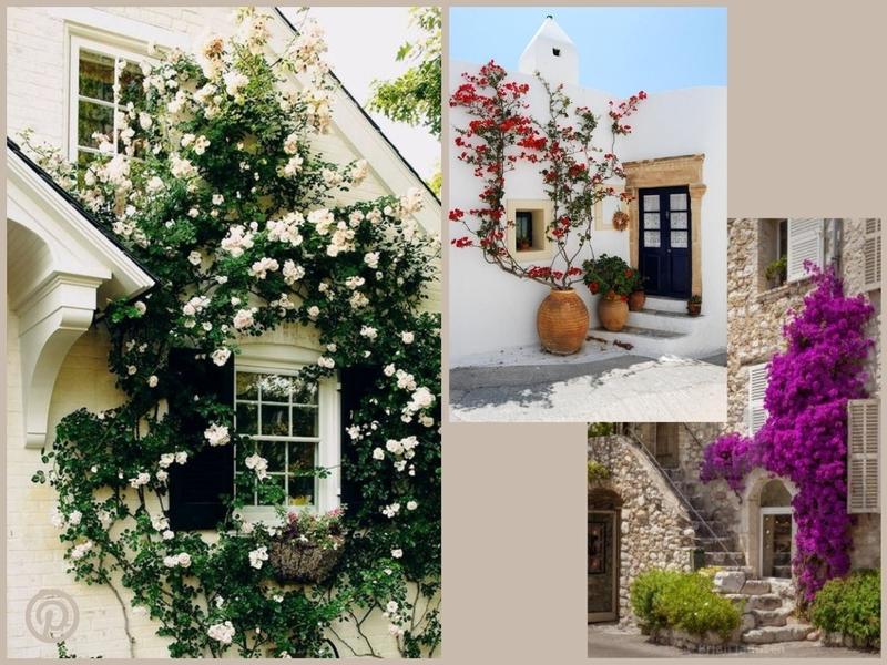 inspiration revêtement extérieur de maison fleurie