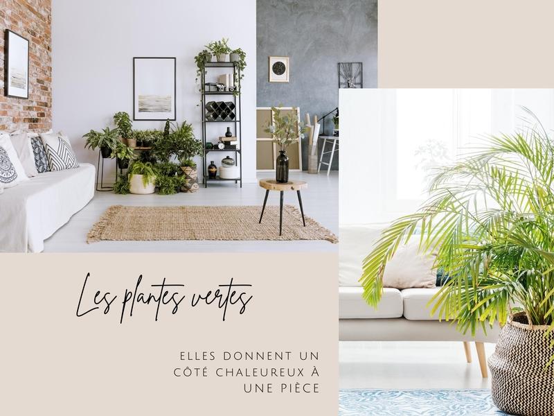 alt : décorer sa maison à vendre avec des plantes pour de belles photos